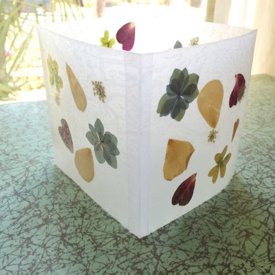 final product - pressed flower luminaries - IMPRESSED by nature